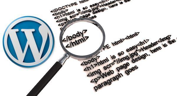 Scovare codice malevolo nei temi wordpress